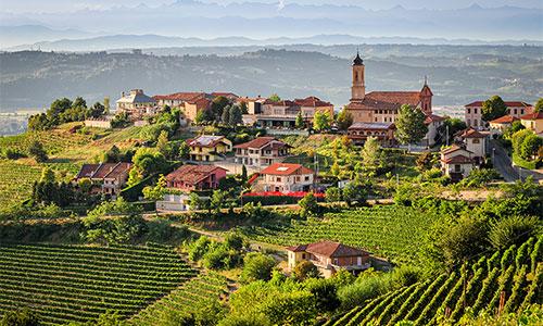 Stimme Leserreisen - Weinwanderung im Genussland Piemont