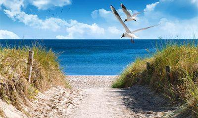 Stimme Leserreisen - Ostseeküste und Inselflair