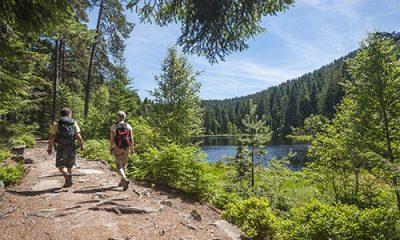 Stimme Leserreisen - Genusswandern im Schwarzwald