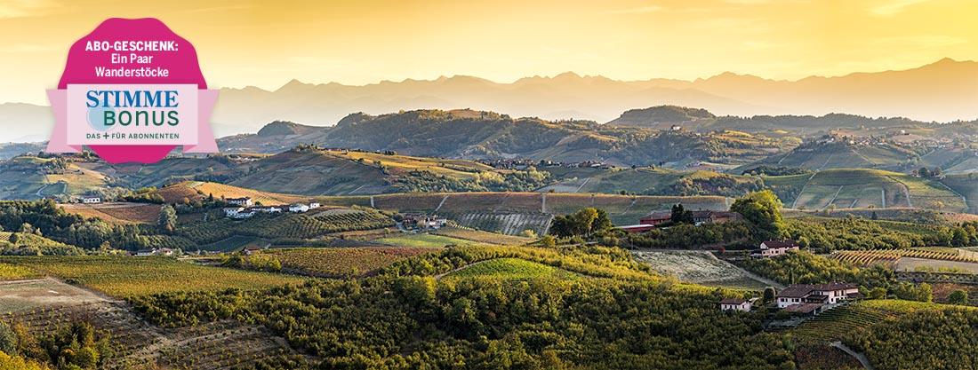 Stimme Leserreisen - Wein im Piemont