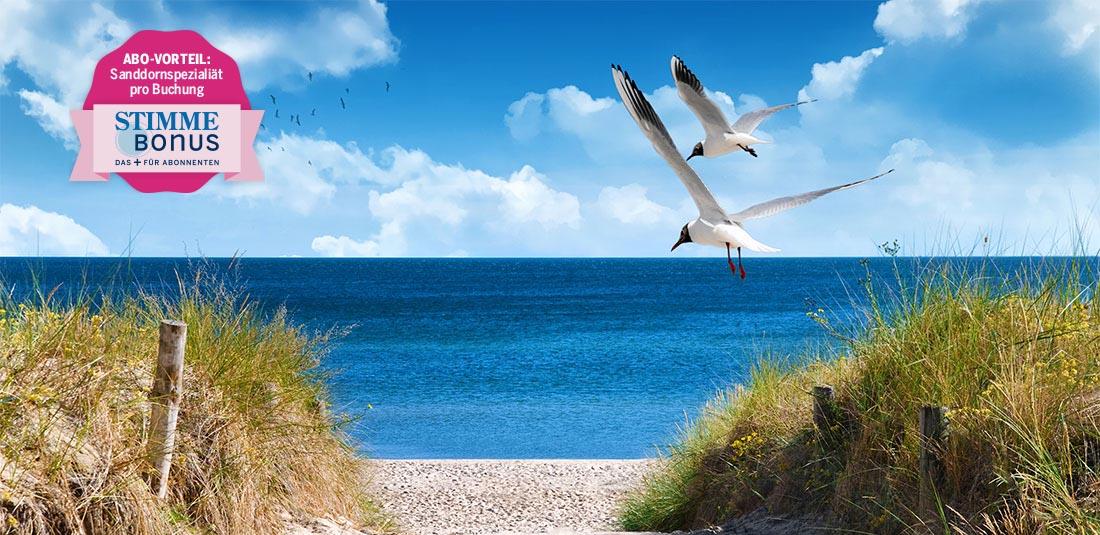 Stimme Leserreisen - Reise an die Ostseeküste mit Inselflair